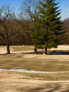 18 green thawing out.
